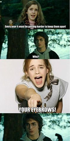 Insulting Harry Potter Memes, Mean, Insulting Pictures, GIFs ...