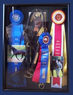 Ways to Preserver your Horse Show Ribbons | VR Horse Show Week do a few with each horse, pics and main ribbons.