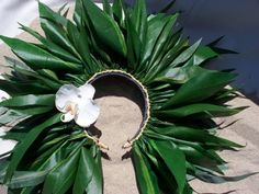 braided ti leaf headpiece