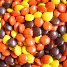 Bulk Reese's Pieces Candy from Temptation Candy. #Reeses