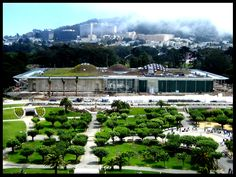 California+Academy+of+Sciences | California Academy of Sciences