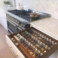 A well-labeled and easily accessible spice drawer.