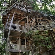 giant-handmade-tree-house