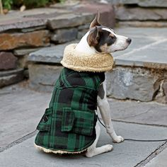 Plaid Coat for Dogs - Lined in shearling and trimmed with a shearling collar for sumptuous warmth.