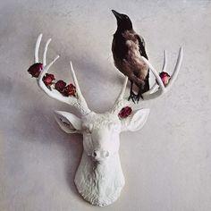 хипстерский олень рисунок - Поиск в Google