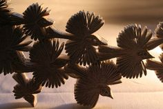birds - bronia sawyer