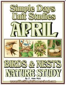 Free Birds & Nests Nature Unit Study (94 Pages!)