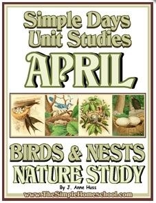 Free Birds & Nests Nature Unit Study (94 Pages!)