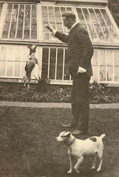 Vintage photo, leaping dog, from Libby Hall Collection