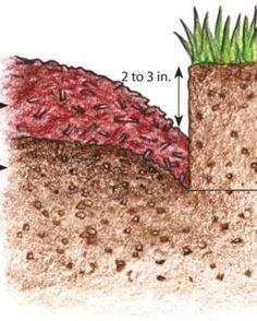 La dernière étape de la confection d'une bordure, consiste à abaisser de 2 à 3 pouces de paillis vers le lit de la plate-bande. Le paillis non seulement supprime les mauvaises herbes mais ajoute également une riche couleur foncée sur le bord. Pailler  la bordure de la pelouse pour créer une pente douce à partir de la partie inférieure du bord de la pelouse jusqu'à la partie supérieure de la plate-bande. (illustration)