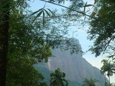 Visão do Cristo Redentor.  Jardim Botânico - Rio de Janeiro