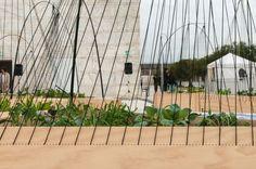 Sunken Garden Seating - The Bridge Gardens by Turenscape is an Urban Oasis (GALLERY)