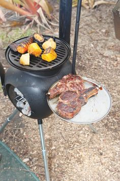If you think cooking outdoors means burnt sausages and undercooked drumsticks, or no food at all because the wind stops your barbecue from lighting, relax. Outdoor Oven, Outdoor Cooking, Barbacoa, Bbq Grill Diy, Gas Bottle Wood Burner, Diy Wood Stove, Tent Stove, Best Camping Stove, Bbq Area