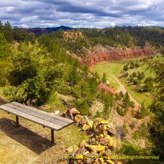 Bench view