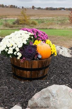 Whiskey Barrel Decorate For Fall Using Mums, Pumpkins, and Kale with a Small Sol. Whiskey Barrel Decorate For Fall Using Mums, Pumpkins, and Kale with a Small Solar Landscape Light to Show it All Off at Night Landscaping Tips, Front Yard Landscaping, Natural Landscaping, Hillside Landscaping, Landscaping Software, Fall Yard Decor, Fall Decor Outdoor, Ideas Para El Patio Frontal, Fall Mums