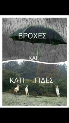 Βροχές και κάτι γιδες... Funny Greek Quotes, Greek Memes, Funny Photo Memes, Funny Photos, Bring Me To Life, Funny Letters, Funny Statuses, Funny Times, Clever Quotes