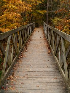 """""""Trail to Lost Valley"""" by cormack13 on Flickr - Trail to Lost Valley near Ponca, Arkansas"""