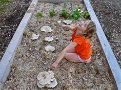 Girl showing mushrooms grown in a garden bed with the 100th Monkey Mushroom Farms mushroom garden kit