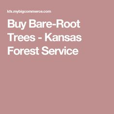 Buy Bare-Root Trees  - Kansas Forest Service