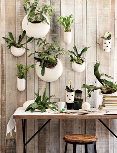 plant decor | #f21home