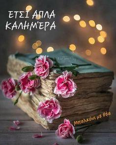 Fb Wallpaper, Flower Phone Wallpaper, Beautiful Flowers Wallpapers, Pretty Wallpapers, Calming Pictures, Bff Drawings, Book Flowers, Good Morning Flowers, Beautiful Book Covers
