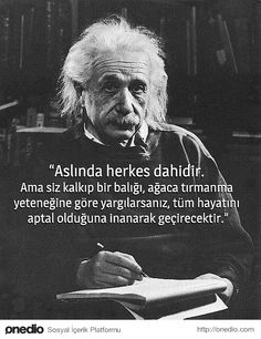 New Ideas for Life: Albert Einstein quotes Famous Movie Quotes, Quotes By Famous People, People Quotes, Citation Einstein, Albert Einstein Quotes, Wisdom Quotes, Book Quotes, Lyric Quotes, Cute Quotes For Her