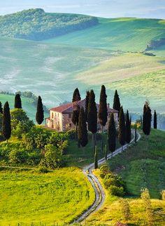 Tuscany non è un quadro ...è una foto :) !!