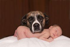 Die Baby-Domains kommen zur Welt...