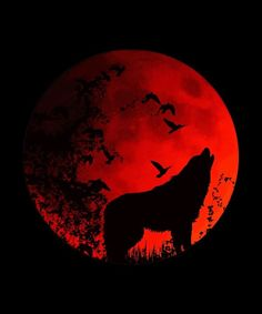 Blood Moon Lunar Eclipse Wolf Howling At The Moon Art Print by Kanig Designs. All prints are professionally printed, packaged, and shipped within 3 - 4 business days. Choose from multiple sizes and hundreds of frame and mat options. Wolf Silhouette, Dark Fantasy, Fantasy Art, Blood Moon Lunar Eclipse, Tattoo Mond, Wolf Painting, Howl At The Moon, Wolf Wallpaper, Wolf Spirit