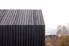 Image 24 of 43 from gallery of 8 Blacks / NRJA. Photograph by Gatis Rozenfelds Wood Architecture, Architecture Details, Installation Architecture, Sauna House, Wood Facade, Black Barn, Timber Cladding, Modern Barn, Interior Exterior