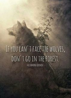 best wolf quotes: If you can't face the wolves don't go in the forest. Wisdom Quotes, True Quotes, Great Quotes, Quotes To Live By, Motivational Quotes, Inspirational Quotes, Quotes That Rhyme, Quirky Quotes, Simple Quotes