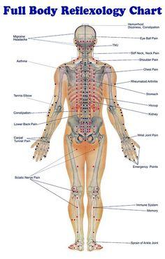 Full Body Reflexology Chart - Meanderings...