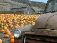 3 of my pins. Autumn/old trucks and barns Pumpkin Farm, Primitive Fall, Autumn Scenery, Happy Fall Y'all, Fall Pictures, Fall Harvest, Harvest Farm, Harvest Time, Fall Family