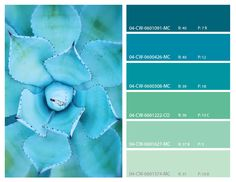 Teal and turquoise color palette-We are all fond of these beautiful colors, especially with the arrival of summer.