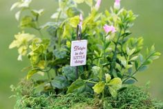 Delight in the Little Things by TheLittleHedgerow on Etsy