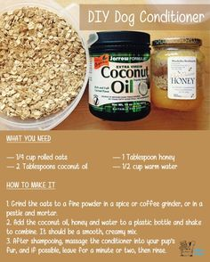 Easy recipe for a DIY and natural dog conditioner. Perfect for pooches with allergies to chemicals!