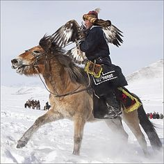 Speeding Eagle Hunter in.: Photo by Photographer Karl Schuler - One of 3 reasons why I want to go to Mongolia - the horses. is the grasslands, 3 is the people Mongolia, Rapace Diurne, People Of Interest, Birds Of Prey, Nature Images, Central Asia, People Of The World, World Cultures, Horse Riding