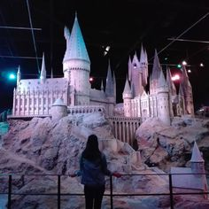 """1,666 Likes, 23 Comments - books? books. (@littlebookthings) on Instagram: """"Hiiii guys!   visited the harry potter…"""""""