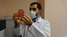 Arı mucizesi propolis Covid-19 aşısının etkinliğini arttırıyor sitokin fırtınasını engelliyor - Sağlık Haberleri