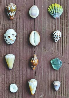 I would use rocks Isaiah and the whole family decorated,  maybe even friends and visitors to create a large collage!!!