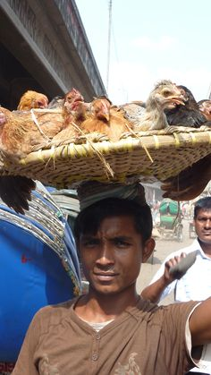 This boy is selling his chicken on the streets in Dhaka