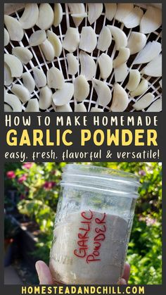 If you have excess garlic on your hands, I highly suggest making garlic powder to preserve it. Homemade fresh garlic powder is incredibly flavorful, easy to make, and can be used in a wide variety of meals! #garlicpowder #garlic #preserving #dehydrating #garden Preserving Garlic, Harvesting Garlic, Preserving Food, Homemade Spices, Homemade Seasonings, How To Make Homemade, Dehydrator Recipes, Food Processor Recipes, Unique Recipes