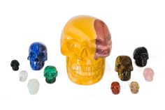 Crystal skull carvings from small to large in many semi precious stones from Crystals (UK) - the UK's leading crystal retailers. Carved Skulls, Hand Carved, Crystals Uk, Crystal Skull, Quartz, Carving, Stone, Rock, Wood Carvings