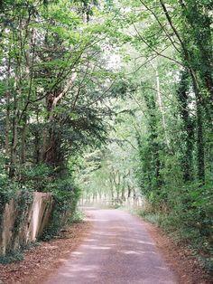 English Countryside Walk: Thames Path, Pangbourne to Goring-o. Thames Path, English Countryside, Wild Hearts, Northern California, Pathways, Wales, Britain, Scotland, Trail