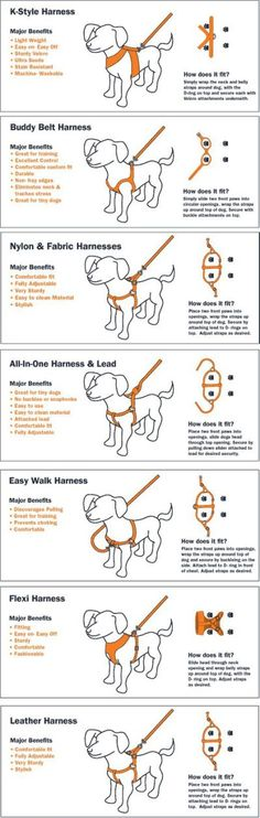 Large Dog Harness Pattern.Dog.Car