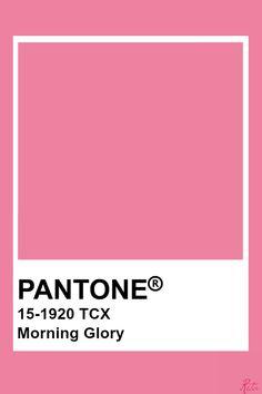 Morning Glory Colour Pallete, Colour Schemes, Color Trends, Pantone Swatches, Color Swatches, Pantone Colour Palettes, Pantone Color, Color Palette Challenge, Iphone Wallpaper App