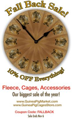Great sale on all of our guinea pig stuff! www.GuineaPigMarket.com and www.GuineaPigCagesStore.com