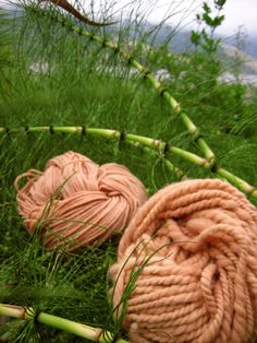 Naturally dyed with horsetail