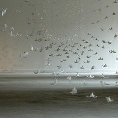 Feather installation by Isa Barbier