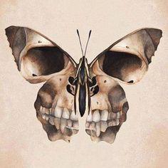 New Tattoo Butterfly Skull Bones Ideas Skull Tattoos, New Tattoos, Los Muertos Tattoo, Borboleta Tattoo, Brust Tattoo, Totenkopf Tattoos, Geniale Tattoos, Tatoo Art, Skull Design